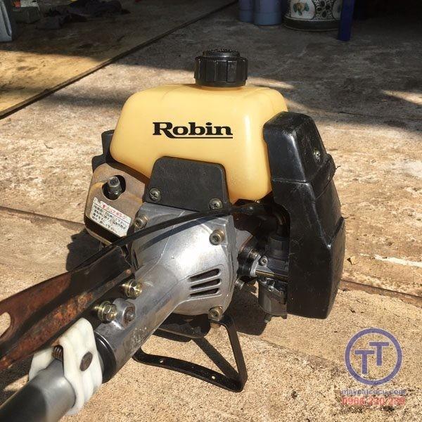 Robin 351 số 5